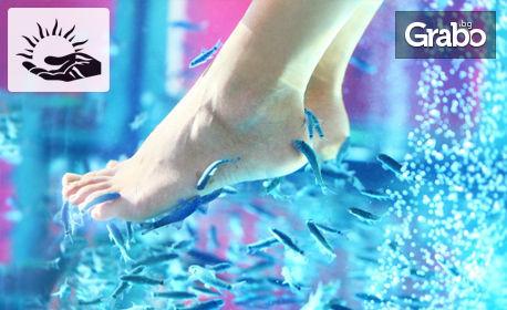 Релаксиращ масаж и пилинг на ходила с рибки Garra Rufa - 15 или 30 минути