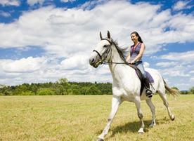 Клуб по конен спорт Астерикс