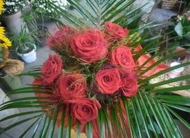 Цветя Ванина