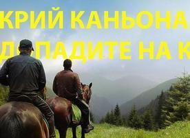 Конна езда Ризов