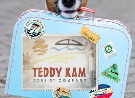 Туристическа агенция Teddy Kam