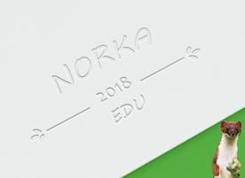 Езиков център Норка