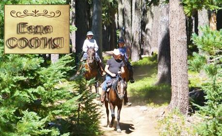 30-минутен урок по езда за напреднали или начинаещи в Конна база Хан Аспарух, с опция на закрито