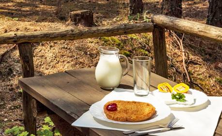 За Великден край Велинград! 2 или 3 нощувки със закуски и вечери - едната празнична