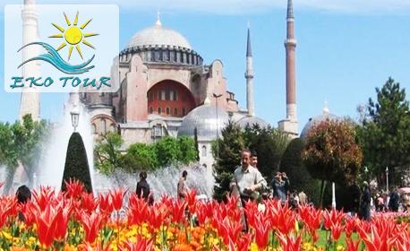 Септемврийски празници в Истанбул! Екскурзия с 3 нощувки със закуски, плюс транспорт и посещение на Одрин