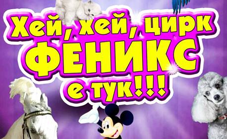 Вход за спектакъл на Цирк Феникс - от 13 до 18 Септември