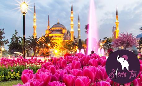 Ранни записвания за Фестивал на лалето в Истанбул през 2020г! 2 нощувки със закуски в хотел Hurry Inn*****, плюс транспорт