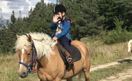 Забавление в сърцето на Родопите, край с. Хвойна! Разходка с кон, с водач - 2 часа или цял ден