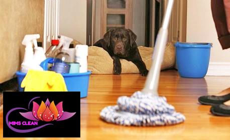 Професионално почистване на дом или офис до 100кв.м, плюс едностранно пране на двоен матрак
