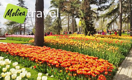 В Истанбул за Цветница! 2 нощувки със закуски, плюс транспорт и посещение на Одрин