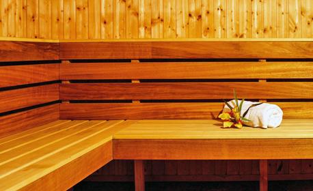 Великден в Девин! 3 нощувки със закуски и вечери, една от които празнична, плюс сауна и парна баня