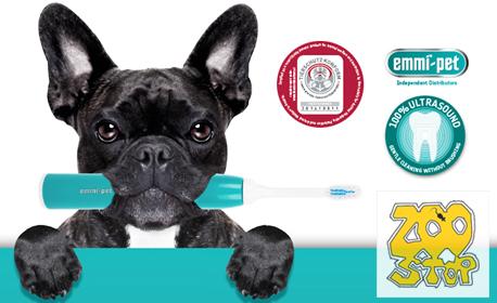 Почистване на зъбен камък на куче - без упойка