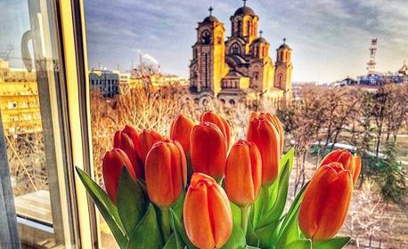 През Април до Белград и Ниш! Нощувка със закуска, плюс транспорт