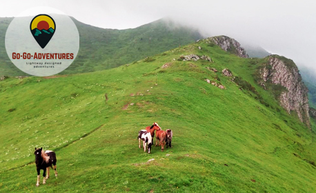 Еднодневна екскурзия с преход до връх Козя стена в Стара Планина на 6 Юни