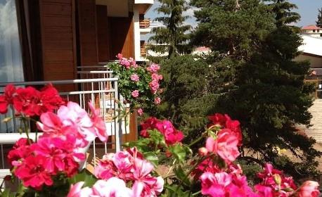 Почивка в сърцето на Родопите! 2 или 3 нощувки със закуски и чаша вино за добро настроение - в Пампорово