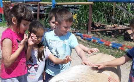 Рожден ден за до 8 деца! 3 часа парти с конна езда, игри и меню - в с. Ягодово