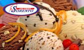 1700гр сладолед Соренто - вкус по избор