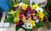 Аранжировка с цветя по избор, или картонена кутия с естествени червени рози