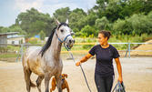 Конна езда или урок