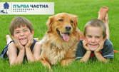 За куче или коте! Пълен клиничен преглед, плюс ваксина, витамини и обезпаразитяване