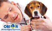 Обстоен общ клиничен преглед на домашен любимец, плюс консултация
