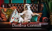 За психичното здраве! Online консултация с психолог Теодора Димова