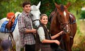 1 или 10 урока по конна езда за начинаещи или напреднали в Конна база Хан Аспарух