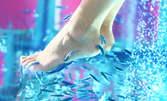 10 минути Fish SPA педикюр за нежни крачета