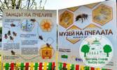 Музей на пчелата