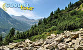 Един ден в Пирин! Екскурзия до връх Вихрен на 8 Август, с отпътуване от Пловдив