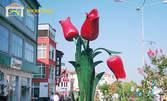 Посети Петъчния пазар в Одрин! Еднодневна екскурзия на 26 Април