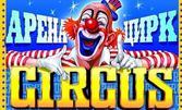 Вход за спектакъл на Цирк Арена - от 1 до 5 Септември, в Добрич