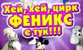Вход за спектакъл на Цирк Феникс от 22 до 30 Юни