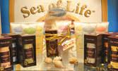 Козметика Sea of Life с подаръчна опаковка и картичка - с до 50% отстъпка