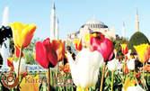 Пролет в Истанбул