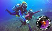 5-дневен водолазен курс в Слънчев бряг, плюс екипировка и сертификат Padi