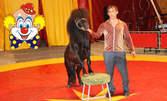 Илюзии, акробатика и клоунада! Вход за Цирк Орбита на 3, 4, 5, 6 или 7 Юли