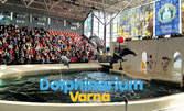 Вижте Коледното шоу на Делфинариум Варна на 16 Декември