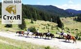 2 часа разходка с кон за начинаещи, с квалифициран инструктор - в Родопите