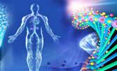 Биорезонансен експрес тест за актуално здравословно състояние на организма