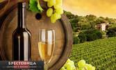 """Дегустационно меню и презентация на вино """"Бендида"""" в Енотека Бендида, само за 14.90 лв"""