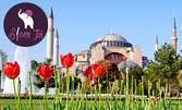 Напролет в Истанбул