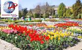 Великденска екскурзия за Парада на лалето в Балчик, нос Калиакра и Мидената ферма Дълбока, плюс безплатна винена дегустация