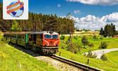 Приказно пътешествие с Родопската теснолинейка! Еднодневна екскурзия до Велинград и Разлог