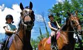 Три индивидуални урока по конна езда за деца с инструктор за 18лв, вместо за 36лв