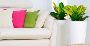 Пране с професионална екстракторна машина Karcher - на мека мебел или матрак