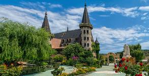 """Вход за Замъка """"Влюбен във вятъра"""" в Равадиново, плюс посещение на Арт галерия"""