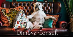 Dimova Consult