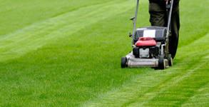 Косене на тревни площи - 0.5дка тревен килим, висока трева или запустели тревни площи