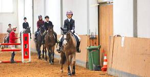 40-минутен урок по конна езда с професионален инструктор